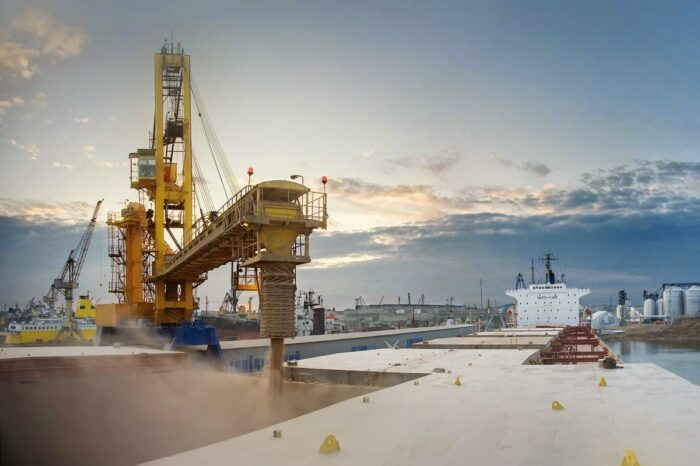 Українська пшениця знову подорожчала: що буде з цінами в найближчому майбутньому